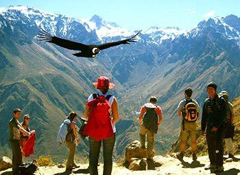 Condor Canyon Cusco & Salkantay trek 5D/4N